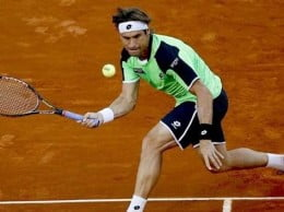 Ferrer Madrid