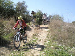 Rutas guiadas en bicicleta