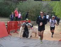 Las mascotas también participaron en la Granadella Trail de Xàbia