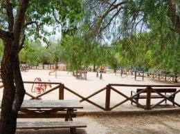 La reforma del Parque Pinosol se financiará con fondos de la Diputación