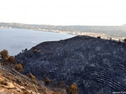 Resultado del incendio en Las Planas y Cabo de San Antonio