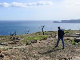 Reforestación del mirador del Cap de Sant Antoni
