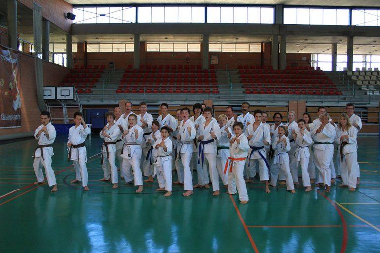 Karatecas  realizando una kata