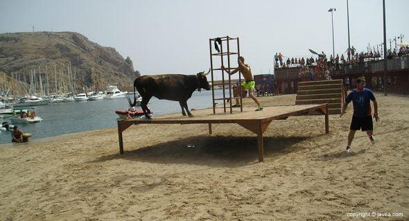 El bou arriba del tablao
