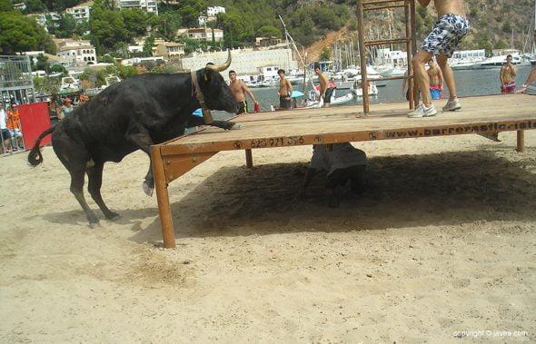 Bou intentado subir al tablao