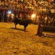 Toro embolao en Xàbia