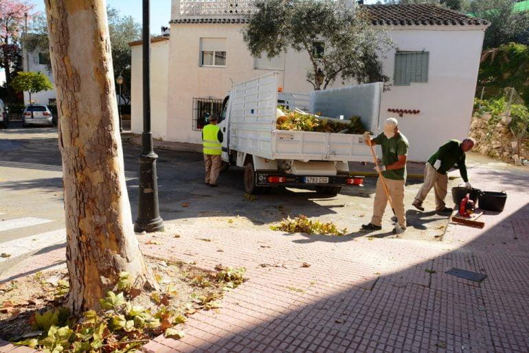 Trabajadores realizando la poda de árboles