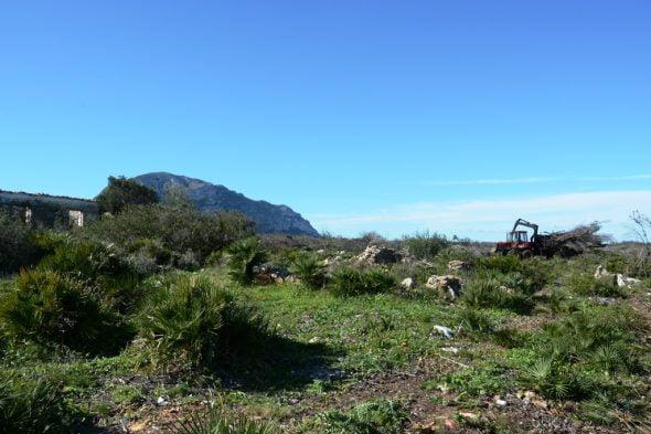Trabajos de recuperación en el Montgó