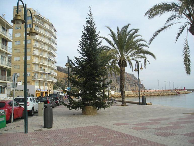 Árbol de navidad instalado en Duanes