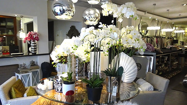 Orquídeas Estudio Decor