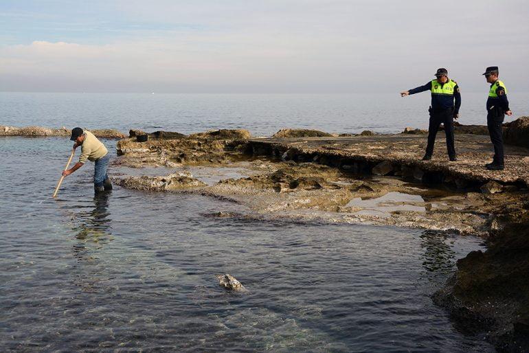 Pescador extrayendo bogamarins
