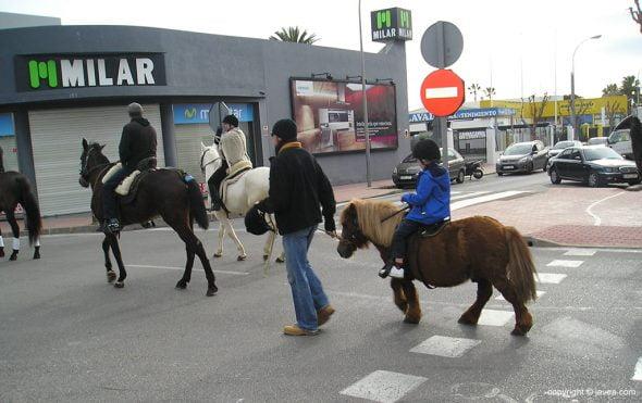 Caballos desfilando en el día de San Antón