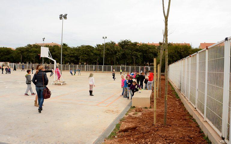 Árboles en el patio del colegio Arenal