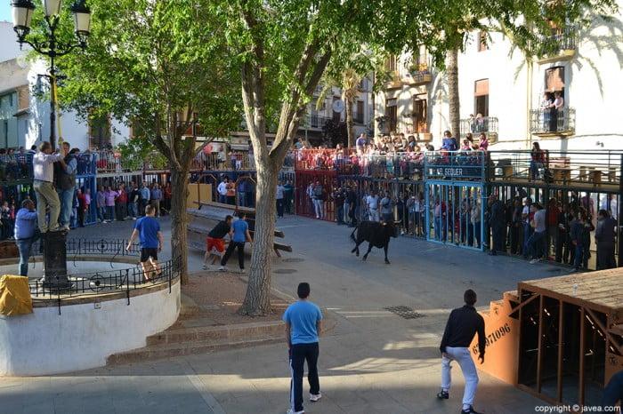 Bous al-Carrer en la Placeta del Convent a Xàbia