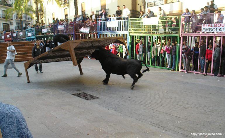 Toro levantando el tablao de madera