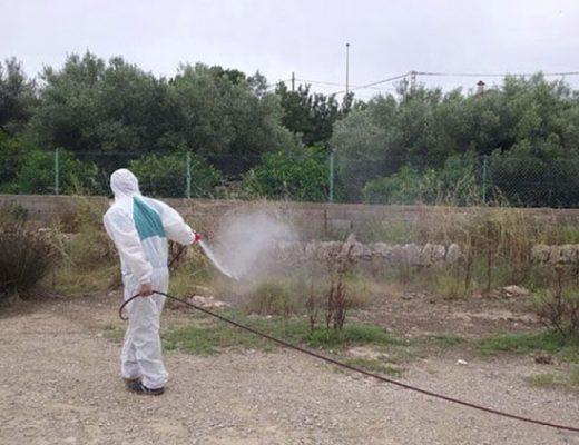 Fumigación mosquito tigre