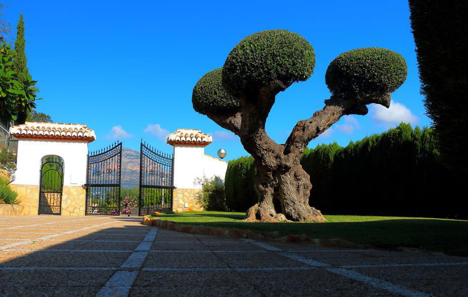 Jardin de la casa casa nova villas j x for Jardin de la villa