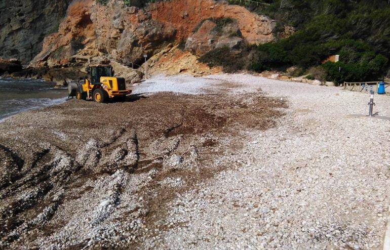 Trabajos de nivelación  de piedras en la playa de la Granadella