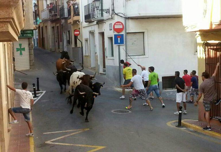 Entrada de bous a Benitatxell