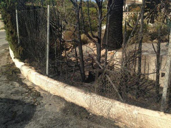 Jardín quemado