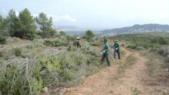 Brigadas Municipales de Medio Ambiente trabajando en el Tossal Gross