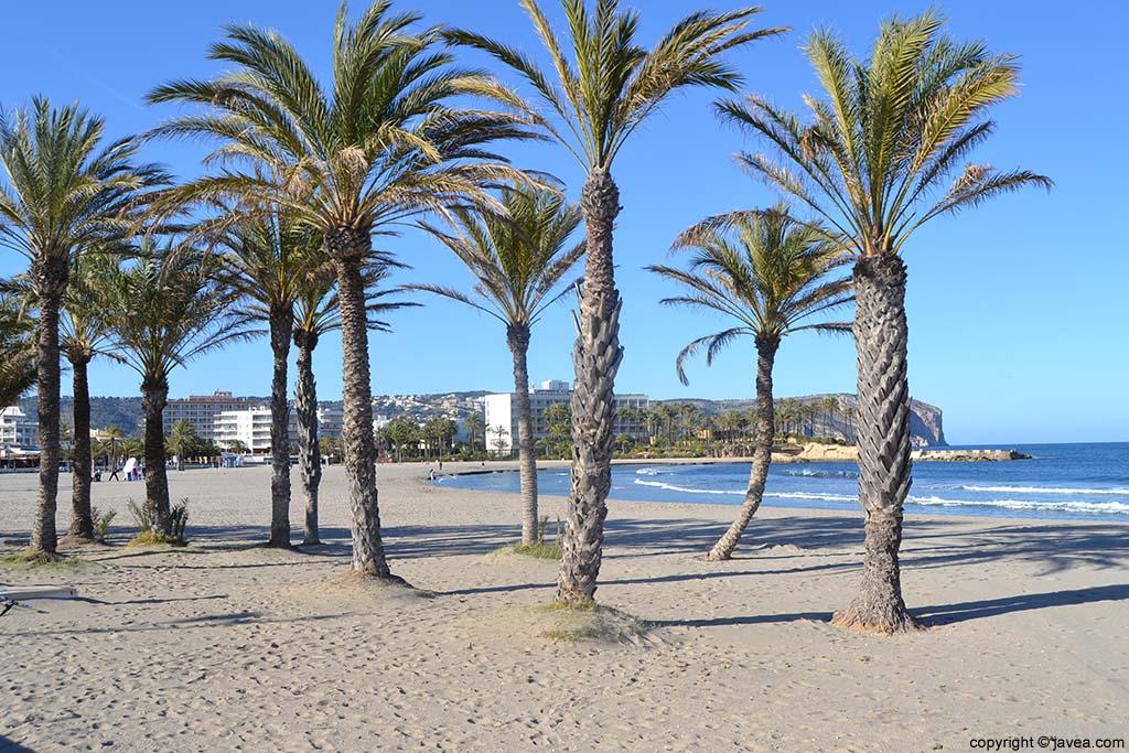 La Playa del Arenal Xàbia