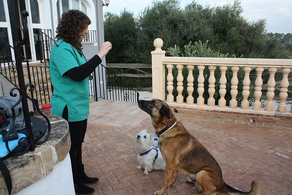 Sandra realizando prácticas de comportamiento con dos de sus pacientes
