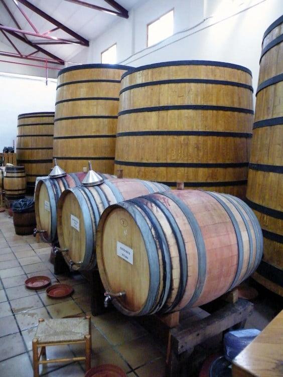 Cooperativa de vinos en Jalón