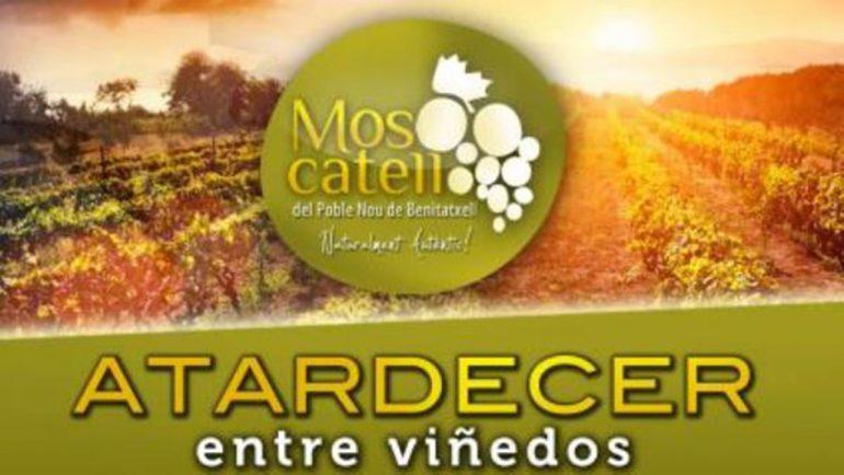 Cartel de Atadecer entre viñedos