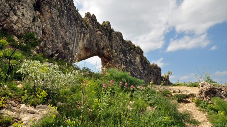 Ruta Cova Forada