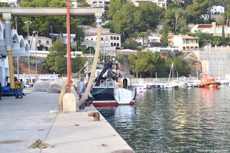 Amarres pesqueros puerto de Xàbia