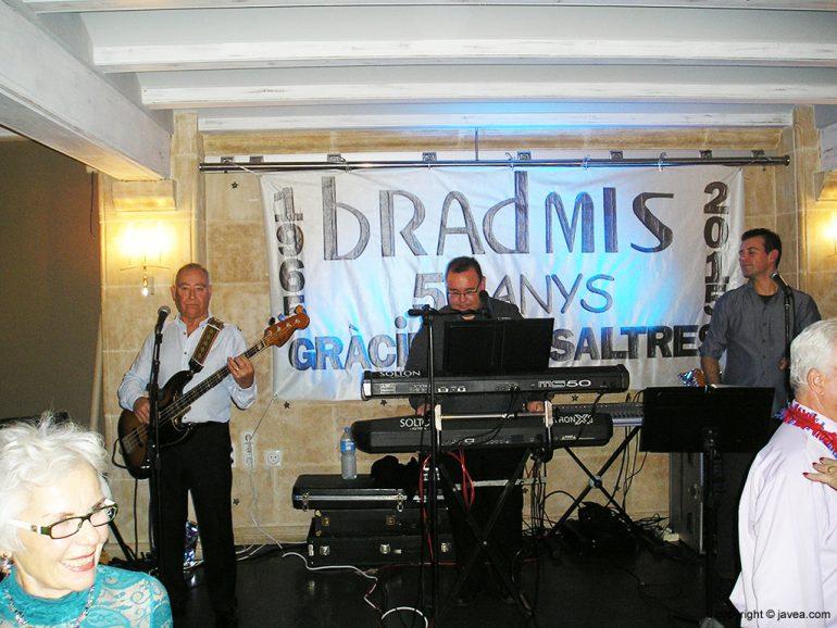 Grupo Bradmis