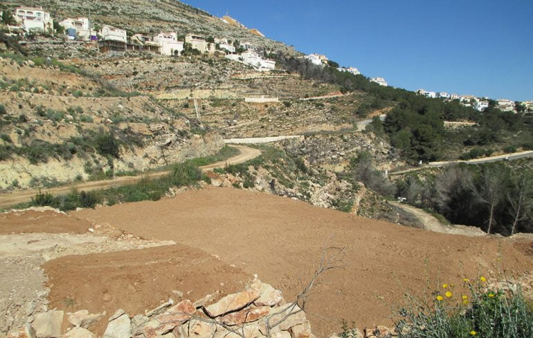 Zona a reforestar en el Puig Llorença