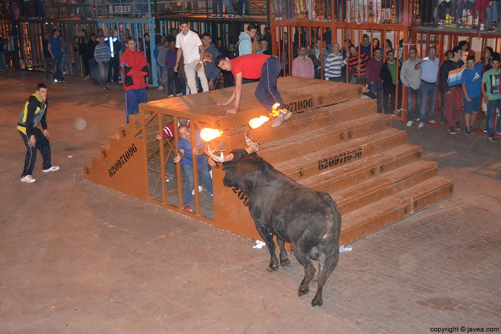 Bou embolat en las fiestas del Nazareno de Xàbia