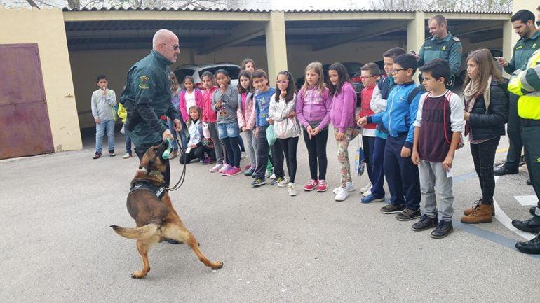 Demostración canina de la Guardia Civil