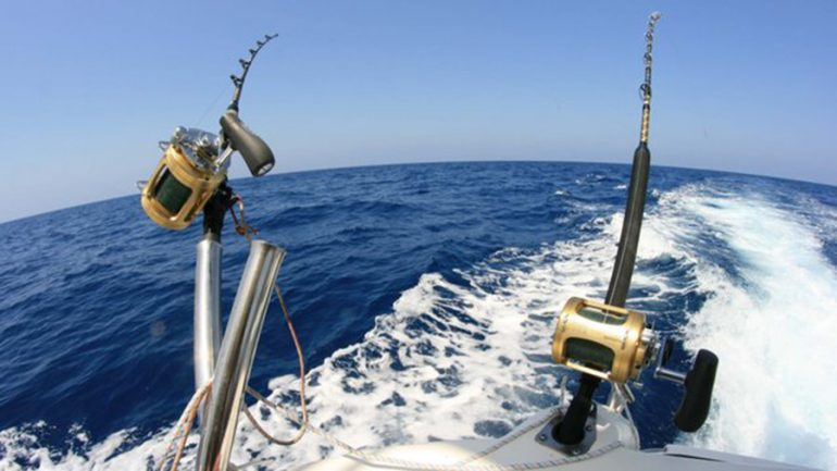 Cañas preparadas para la pesca