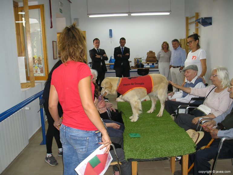 Momento de la terapia en el Centro de Día