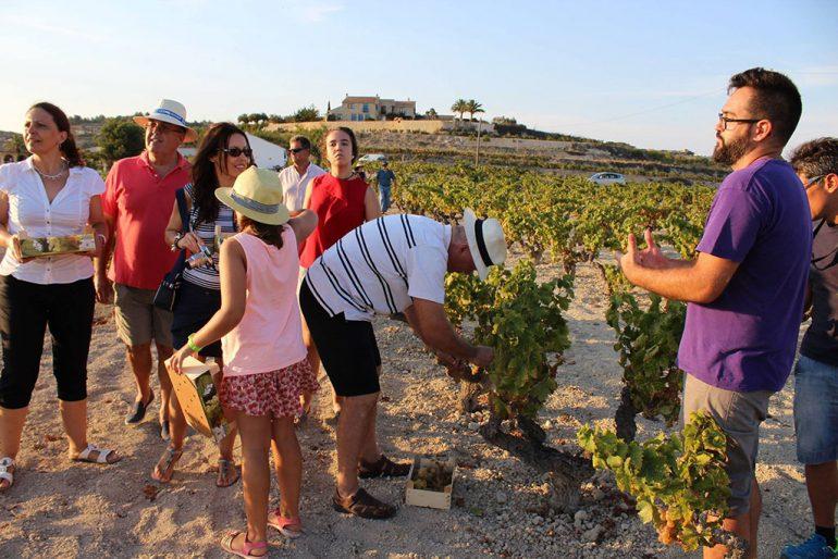 "Participantes en la ruta ""Atardecer entre viñedos"""