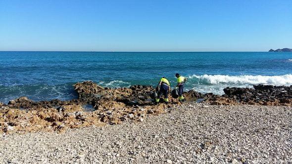 Operarios limpian el litoral de toallitas