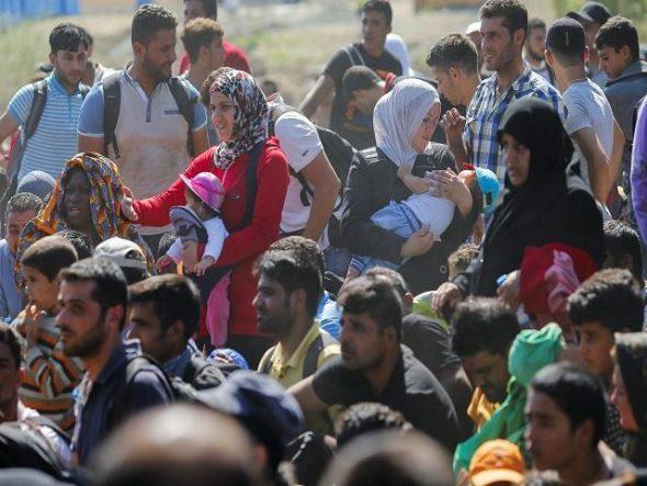 Grupo de Refugiados
