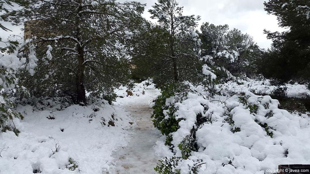103 Nieve en Xàbia