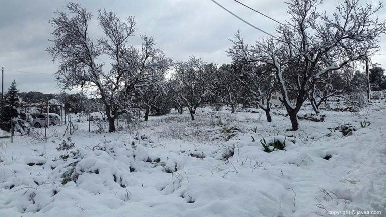 107 Nieve en Xàbia