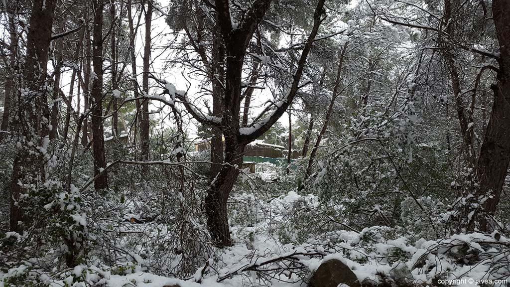 112 Nieve en Xàbia