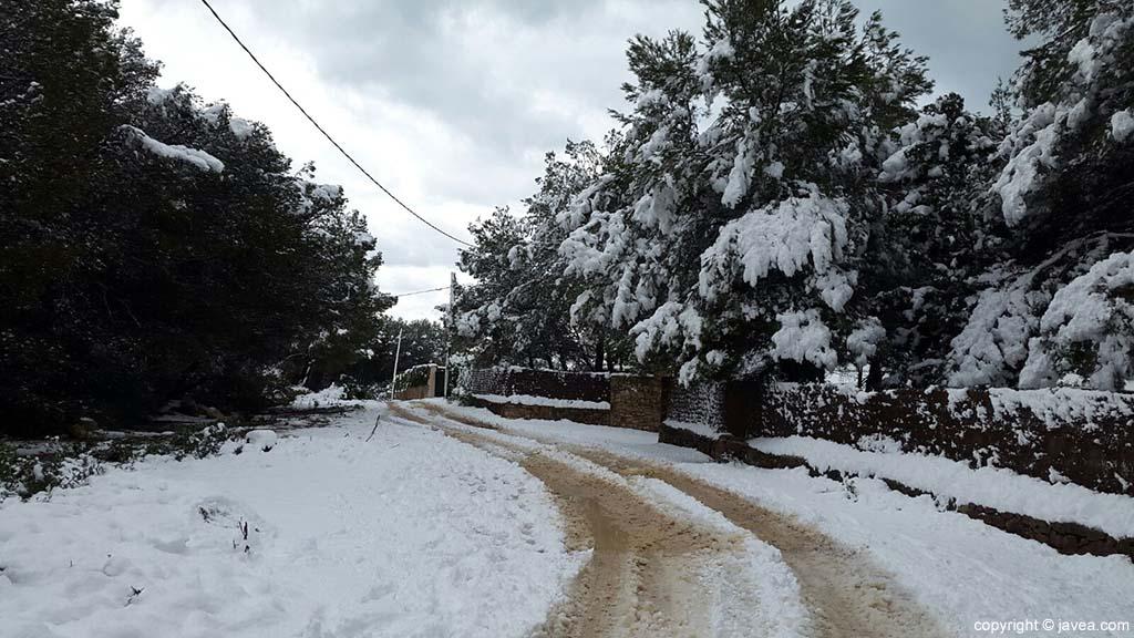 116 Nieve en Xàbia