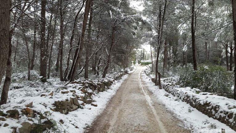 117 Nieve en Xàbia