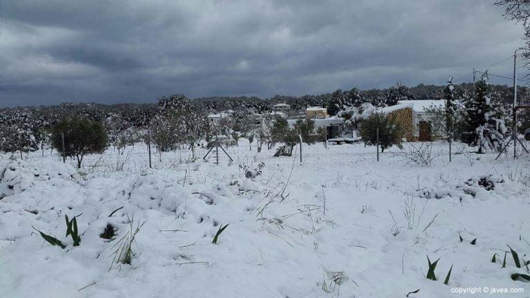 73 Nieve en Xàbia