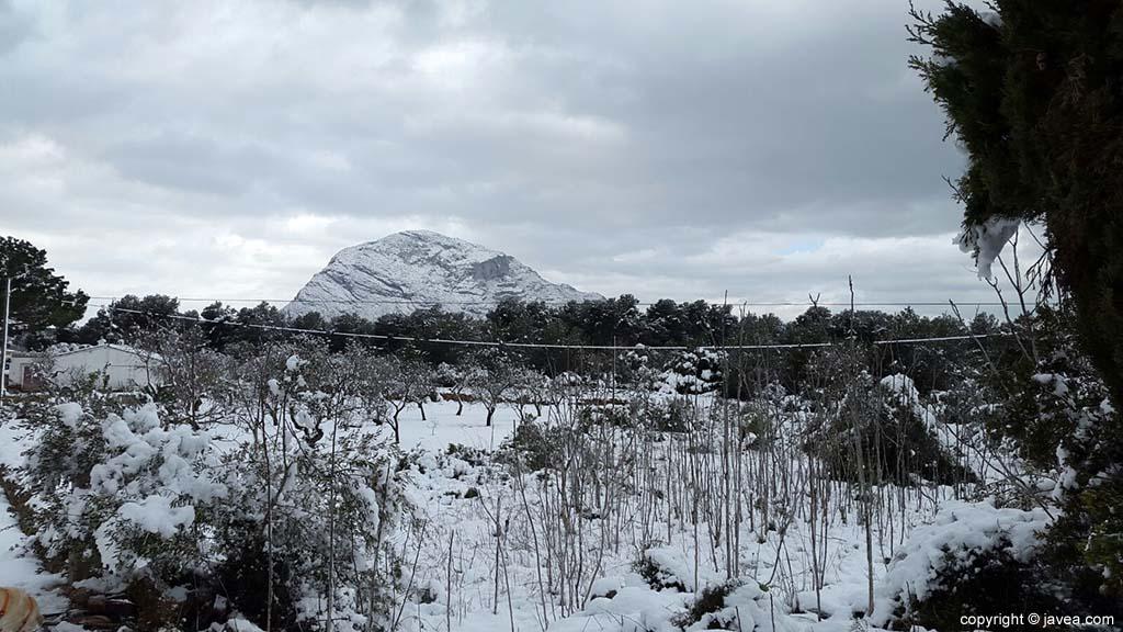 75 Nieve en Xàbia