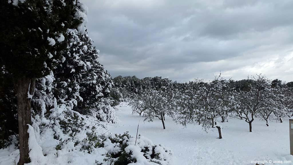 76 Nieve en Xàbia