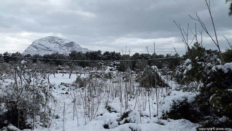 77 Nieve en Xàbia