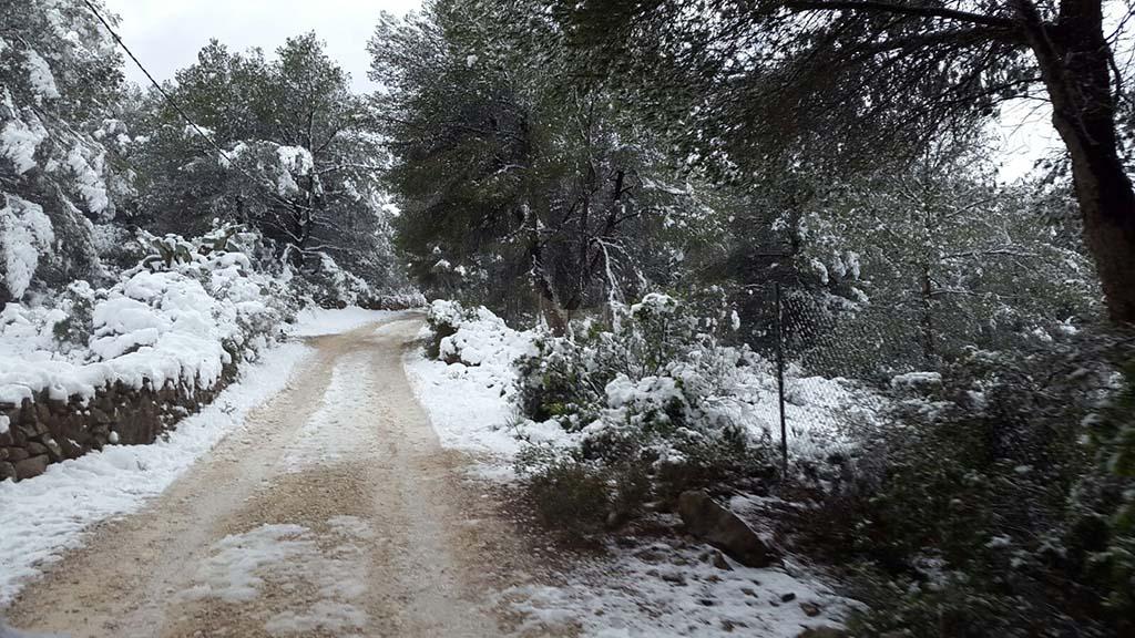 78 Nieve en Xàbia